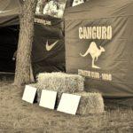 EL CANGURO VUELVE AL BOSQUE